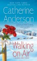 Go to record Walking on air : a Valance Family novel