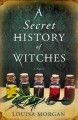 Go to record A secret history of witches : a novel